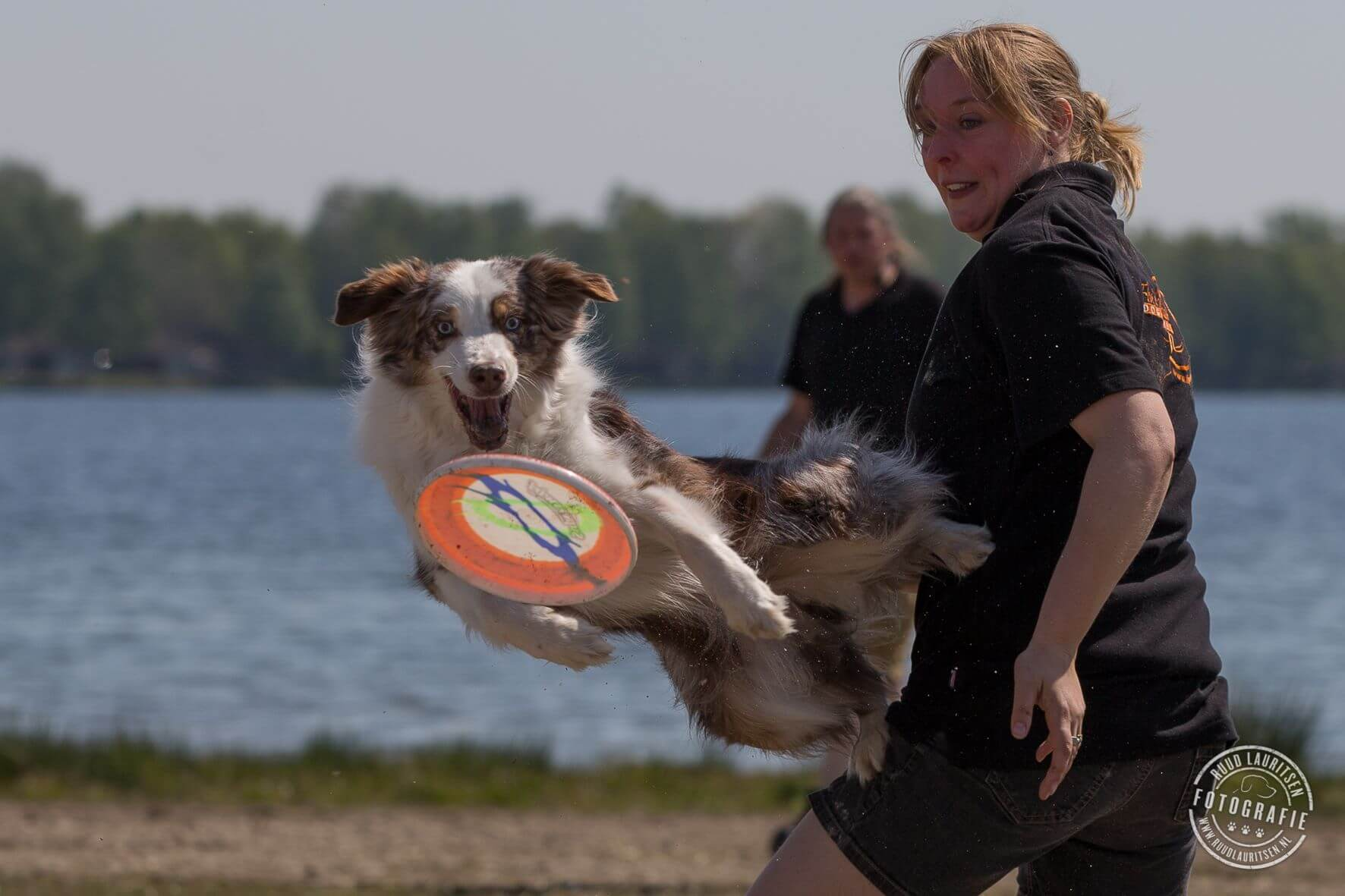 Fly 'em High dogfrisbee
